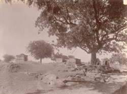 General view of ruins at Dhaknesar, Jhansi District.
